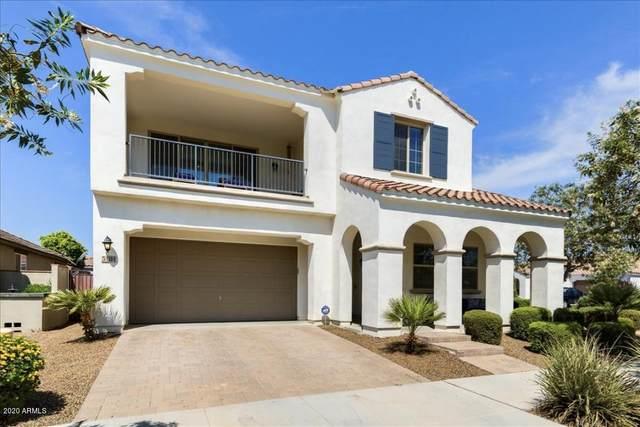 5104 S Salk Lane, Mesa, AZ 85212 (MLS #6108890) :: Dave Fernandez Team | HomeSmart