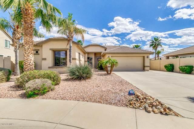 6433 S Trophy Court, Gilbert, AZ 85298 (MLS #6108896) :: Klaus Team Real Estate Solutions