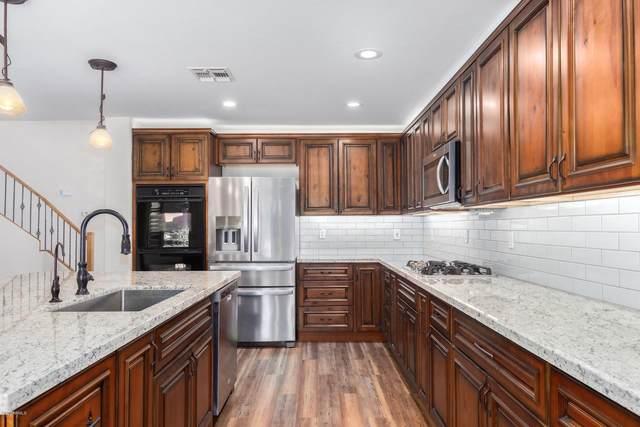 6320 W Honeysuckle Drive, Phoenix, AZ 85083 (MLS #6108979) :: The Property Partners at eXp Realty