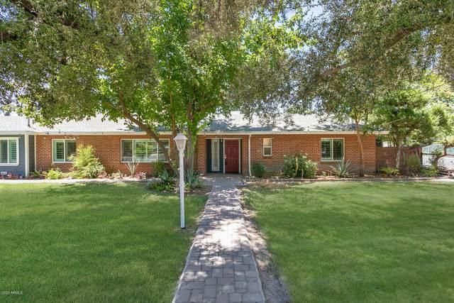 6646 N Central Avenue, Phoenix, AZ 85012 (MLS #6108980) :: Klaus Team Real Estate Solutions