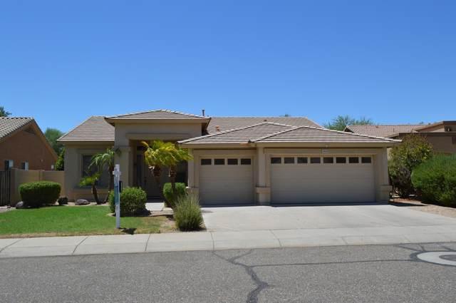 25628 N Hackberry Drive, Phoenix, AZ 85083 (MLS #6109110) :: Klaus Team Real Estate Solutions