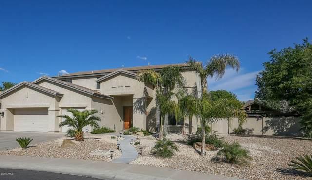 127 N Date Palm Drive, Gilbert, AZ 85234 (MLS #6109155) :: Klaus Team Real Estate Solutions