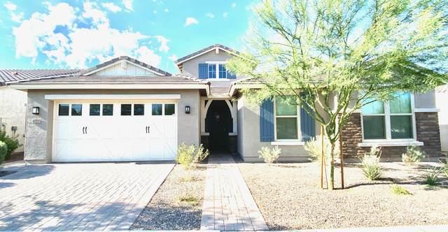 10733 E Sheffield Drive, Mesa, AZ 85212 (MLS #6109171) :: The Daniel Montez Real Estate Group
