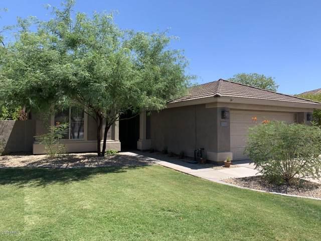 7717 S La Rosa Drive, Tempe, AZ 85284 (MLS #6109172) :: The Helping Hands Team