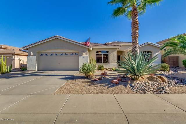 16813 W Northampton Road, Surprise, AZ 85374 (MLS #6109241) :: Arizona Home Group