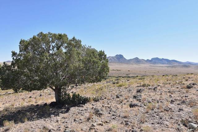 Lot 126 Holly Berry Road, Wikieup, AZ 85360 (MLS #6109282) :: Yost Realty Group at RE/MAX Casa Grande