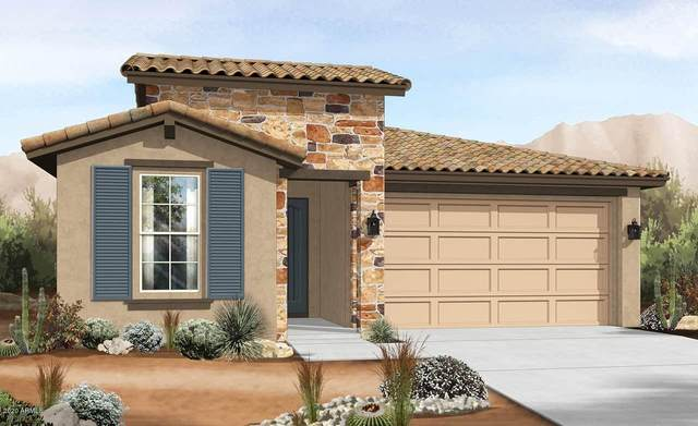 14602 W Aster Drive, Surprise, AZ 85379 (MLS #6109372) :: Long Realty West Valley