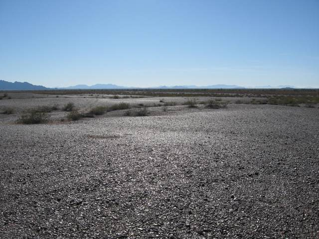 53E N County 5th Street, Yuma, AZ 85364 (MLS #6109495) :: neXGen Real Estate