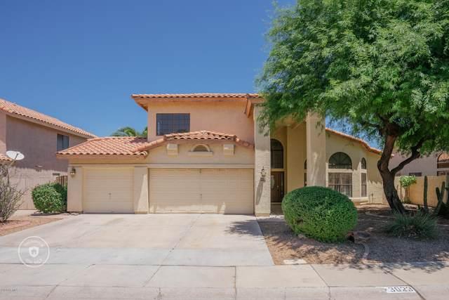 3023 N Meadow Lane, Avondale, AZ 85392 (MLS #6109537) :: The C4 Group