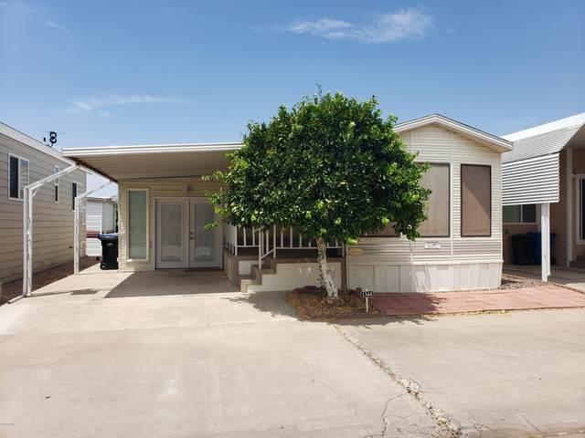 4700 E Main Street #1344, Mesa, AZ 85205 (MLS #6109588) :: Brett Tanner Home Selling Team