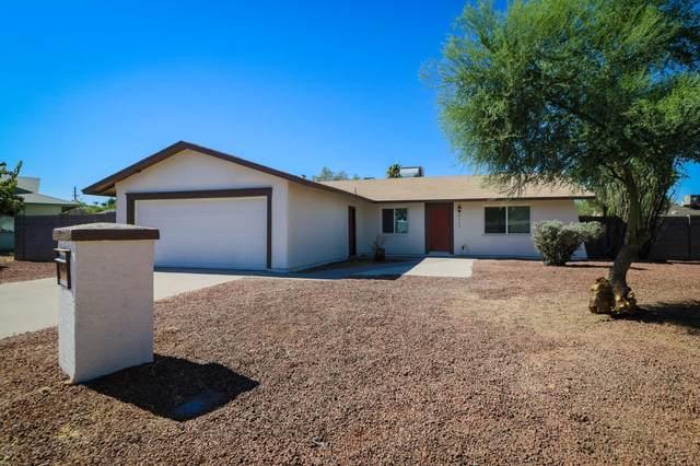 5111 W Gelding Drive, Glendale, AZ 85306 (MLS #6109623) :: Klaus Team Real Estate Solutions