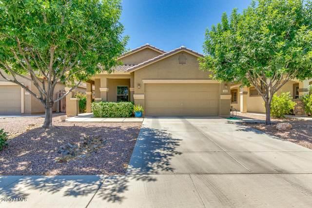 1433 W Brangus Way, San Tan Valley, AZ 85143 (MLS #6109741) :: Klaus Team Real Estate Solutions
