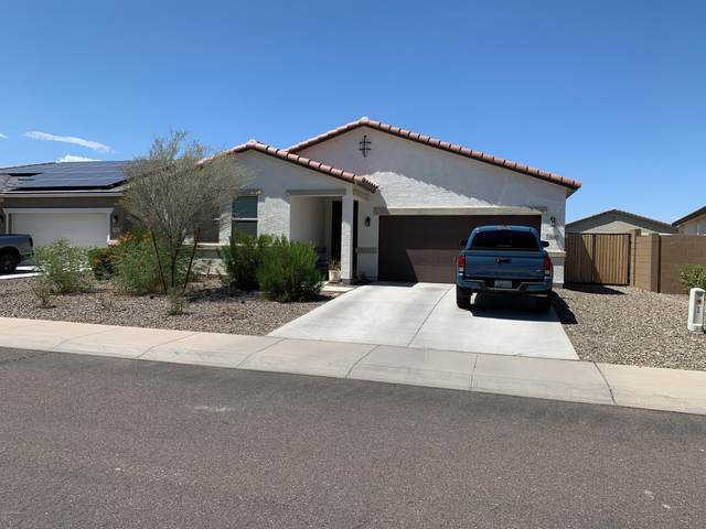 910 E Locust Lane, Avondale, AZ 85323 (MLS #6109750) :: Klaus Team Real Estate Solutions