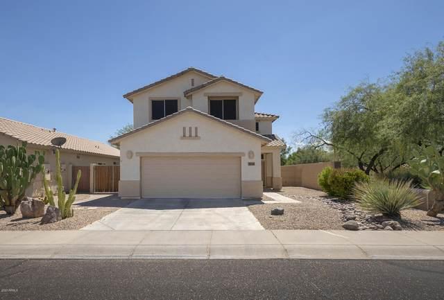 25248 N 40TH Lane, Phoenix, AZ 85083 (MLS #6109778) :: Klaus Team Real Estate Solutions