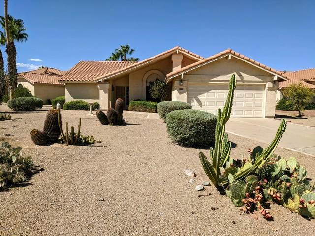 9238 W Behrend Drive, Peoria, AZ 85382 (MLS #6109806) :: Conway Real Estate