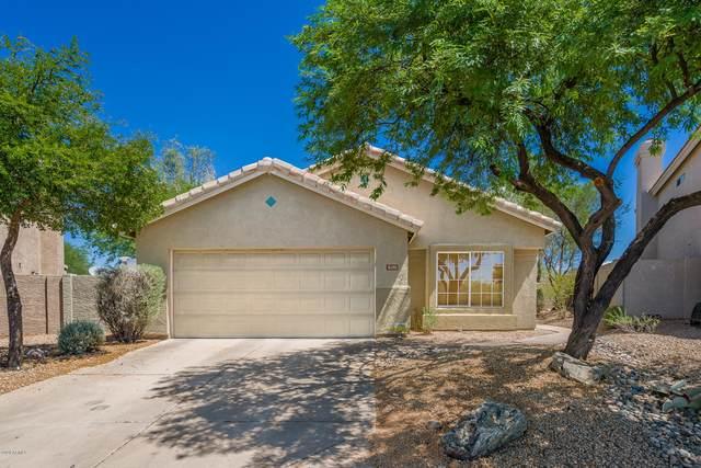 31251 N 42ND Place, Cave Creek, AZ 85331 (MLS #6109855) :: RE/MAX Desert Showcase