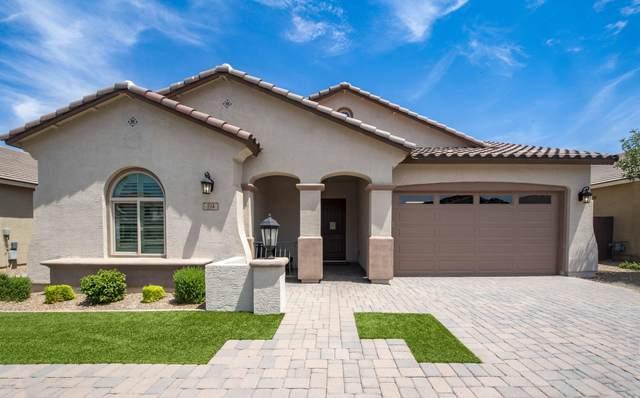 194 W Cucumber Tree Avenue, Queen Creek, AZ 85140 (MLS #6109901) :: Klaus Team Real Estate Solutions