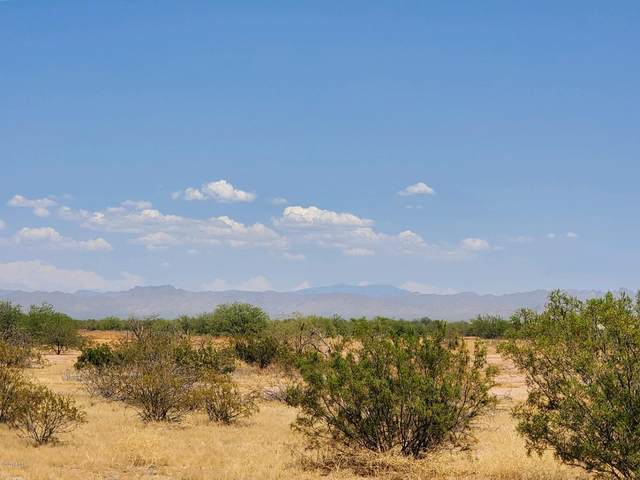 002 N Felix Road, San Tan Valley, AZ 85143 (MLS #6109961) :: The Bill and Cindy Flowers Team