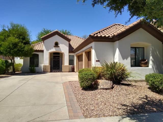 908 W Elm Street, Litchfield Park, AZ 85340 (MLS #6109974) :: Devor Real Estate Associates