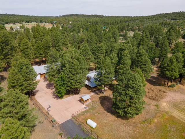 1292 Fox Lane, Pinedale, AZ 85934 (MLS #6110020) :: Klaus Team Real Estate Solutions