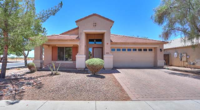 1371 E Judi Drive, Casa Grande, AZ 85122 (MLS #6110025) :: Klaus Team Real Estate Solutions