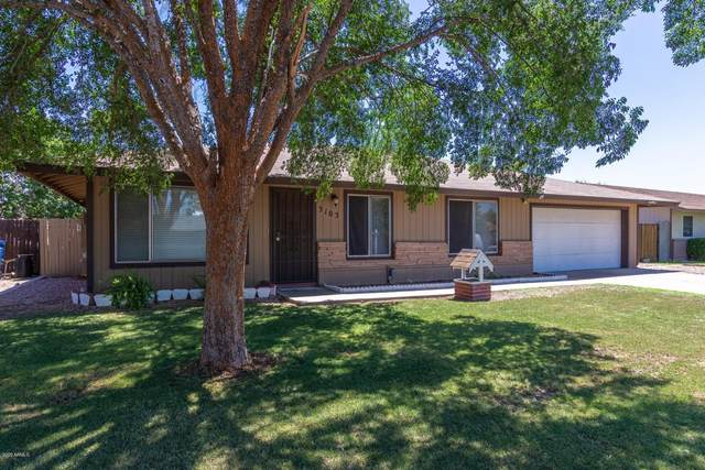3103 E Delta Avenue, Mesa, AZ 85204 (MLS #6110113) :: Klaus Team Real Estate Solutions