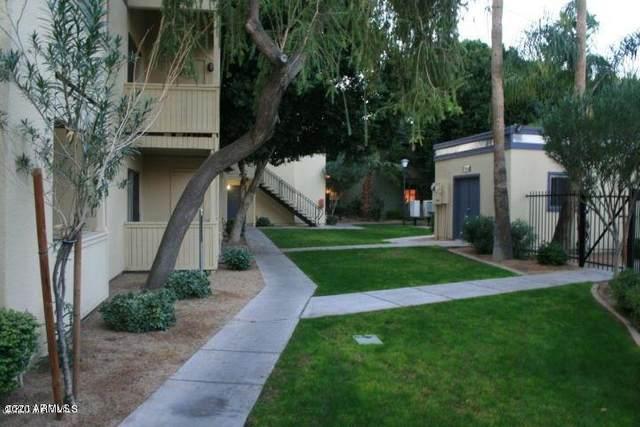 740 W Elm Street #223, Phoenix, AZ 85013 (MLS #6110153) :: Brett Tanner Home Selling Team