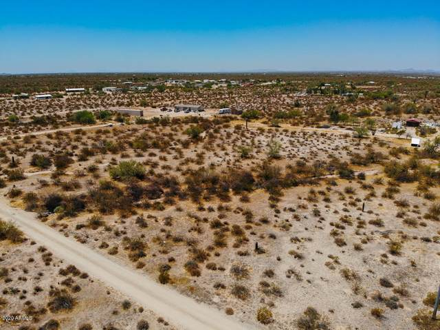 11758 N Dead Man's Gulch Road, Florence, AZ 85132 (MLS #6110216) :: Midland Real Estate Alliance