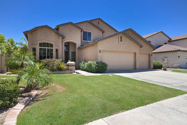 699 W Carob Place, Chandler, AZ 85248 (MLS #6110231) :: The Property Partners at eXp Realty