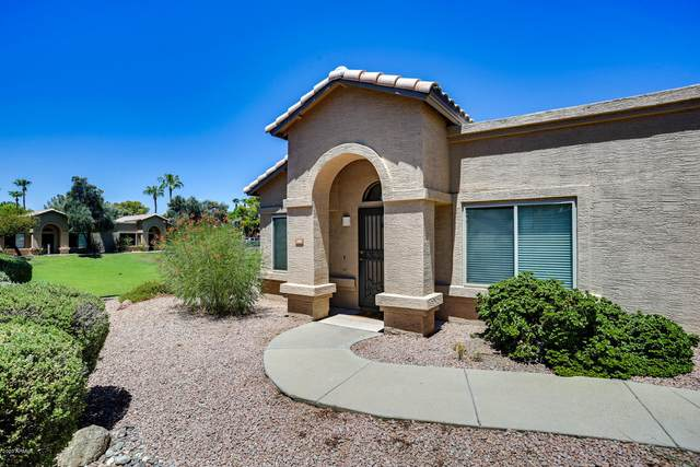 14300 W Bell Road #288, Surprise, AZ 85374 (MLS #6110237) :: The Everest Team at eXp Realty