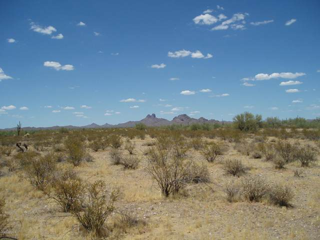 33288 W Olesen Road, Unincorporated County, AZ 85390 (MLS #6110243) :: Conway Real Estate