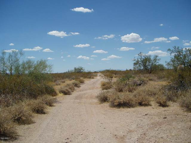 33720 W Olesen Road, Unincorporated County, AZ 85390 (MLS #6110263) :: Conway Real Estate
