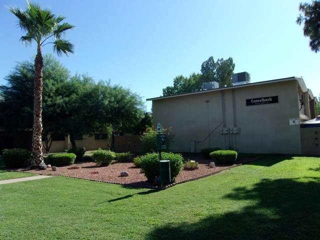 825 N Hayden Road C207, Scottsdale, AZ 85257 (MLS #6110340) :: Brett Tanner Home Selling Team