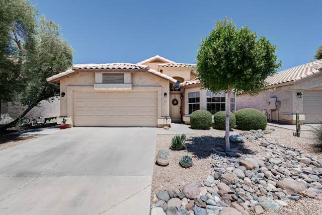 2256 E Williams Drive, Phoenix, AZ 85024 (MLS #6110349) :: The W Group
