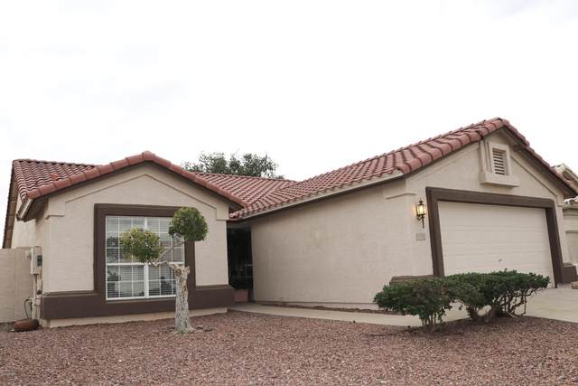 11558 W King Snake Court, Surprise, AZ 85378 (MLS #6110381) :: NextView Home Professionals, Brokered by eXp Realty