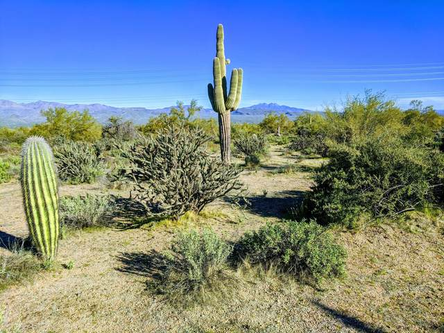 17600 E Whitethorn Drive, Rio Verde, AZ 85263 (MLS #6110431) :: Scott Gaertner Group