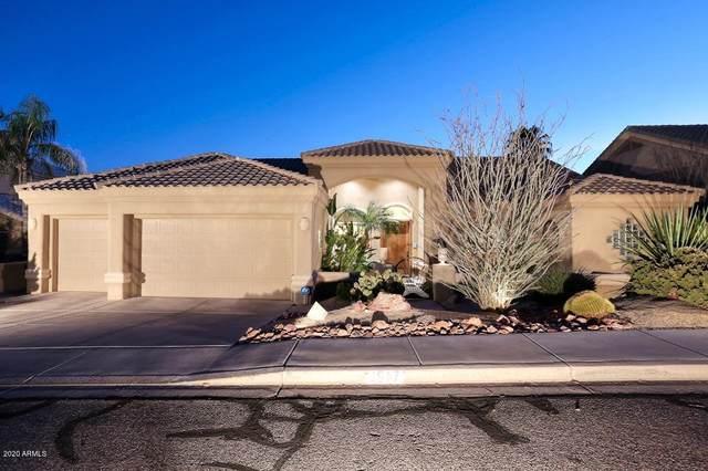 1917 E Clubhouse Drive, Phoenix, AZ 85048 (MLS #6110513) :: My Home Group