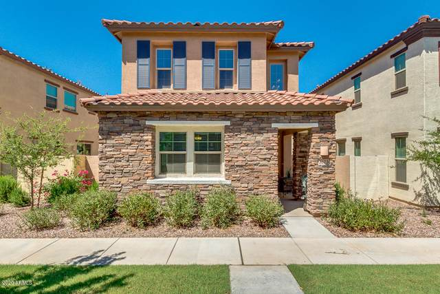 3673 E Honeysuckle Drive, Chandler, AZ 85286 (MLS #6110522) :: Klaus Team Real Estate Solutions