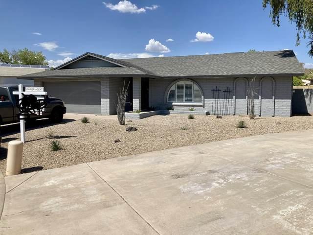 860 E Paradise Lane, Phoenix, AZ 85022 (MLS #6110594) :: The Daniel Montez Real Estate Group