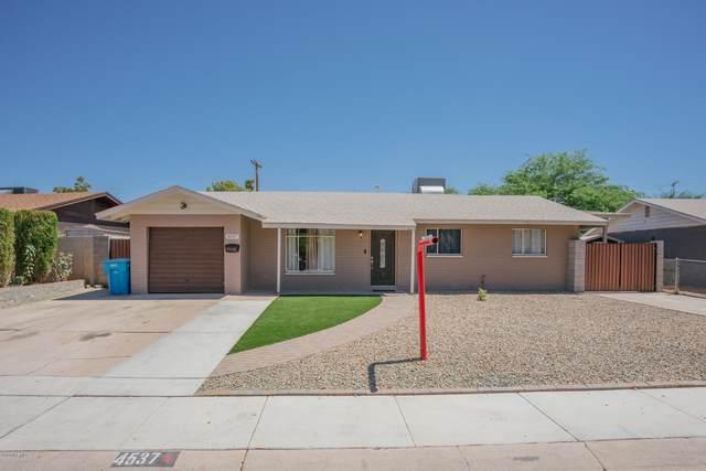 4537 N 50th Drive, Phoenix, AZ 85031 (MLS #6110625) :: The Property Partners at eXp Realty