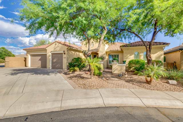 6799 W Trenton Way, Florence, AZ 85132 (MLS #6110644) :: The Daniel Montez Real Estate Group