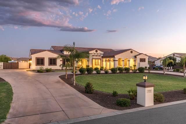 19541 E Via Park Street, Queen Creek, AZ 85142 (MLS #6110693) :: The Laughton Team