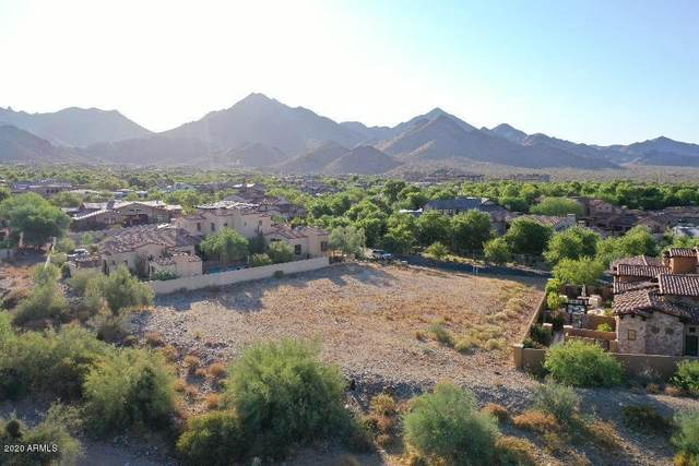 19018 N 97TH Place, Scottsdale, AZ 85255 (MLS #6110763) :: Midland Real Estate Alliance