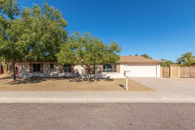 18025 N 20TH Avenue, Phoenix, AZ 85023 (MLS #6110780) :: The Laughton Team