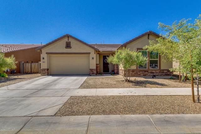 5241 W Lydia Lane, Laveen, AZ 85339 (MLS #6110809) :: Lucido Agency