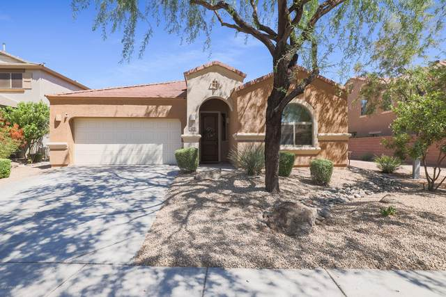 23019 N 43RD Place, Phoenix, AZ 85050 (MLS #6110818) :: Arizona Home Group