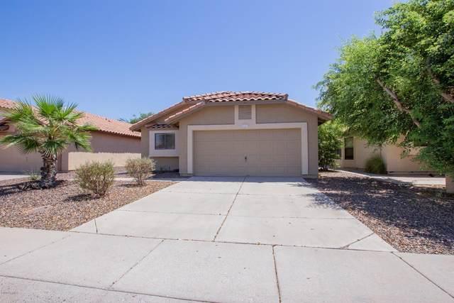 11617 W Sage Drive, Avondale, AZ 85392 (MLS #6110829) :: The Daniel Montez Real Estate Group