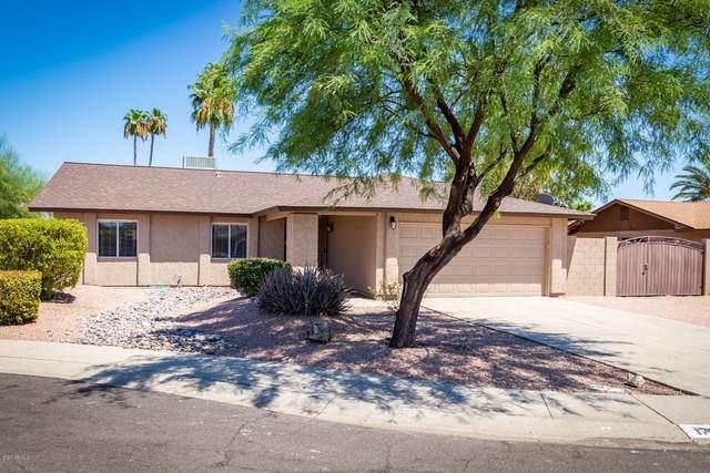 17851 N 40TH Lane, Glendale, AZ 85308 (MLS #6110885) :: Klaus Team Real Estate Solutions