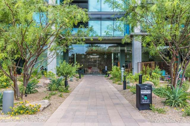 7120 E Kierland Boulevard #1111, Scottsdale, AZ 85254 (MLS #6110977) :: Klaus Team Real Estate Solutions