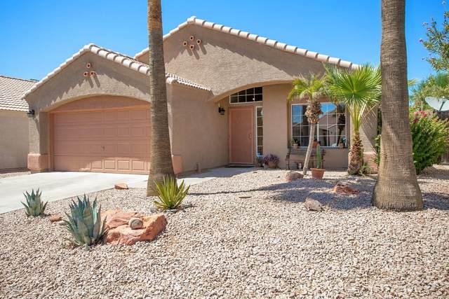 3144 E Wescott Drive, Phoenix, AZ 85050 (MLS #6110994) :: The W Group